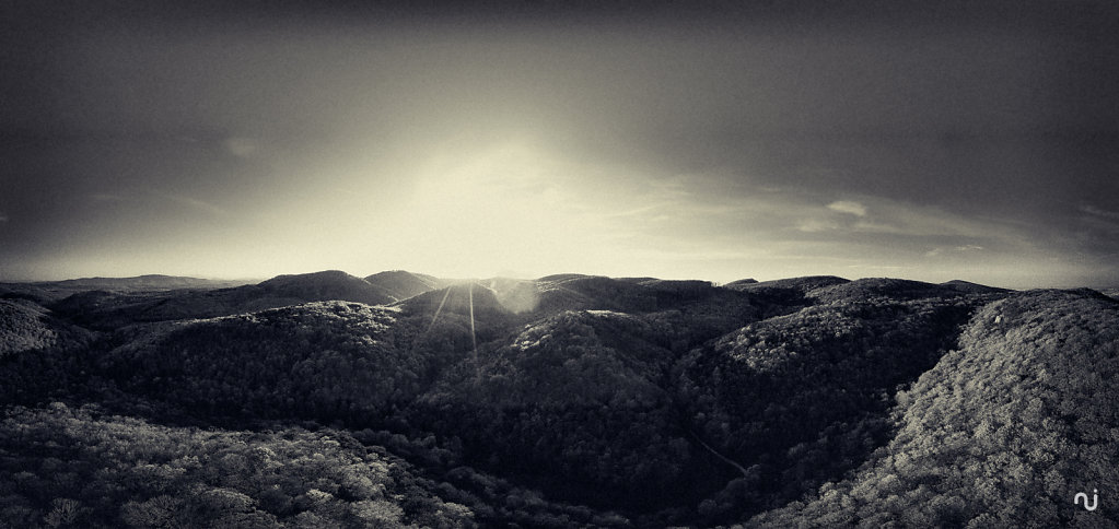 panorama-wienerwald-001.jpg